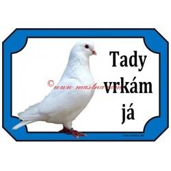 Tabulka holub benešovský