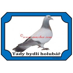 Tabulka holub koburský skřivan