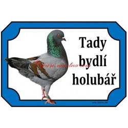 Tabulka holub modenka
