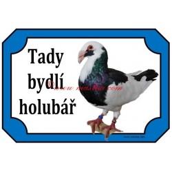 Tabulka holub norimberská bagdeta
