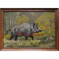 Obraz divoké prase, černá zvěř, olejomalba v rámu