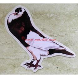 Samolepka holub moravský český stavák