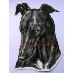 Samolepka galgo, greyhound, chrt