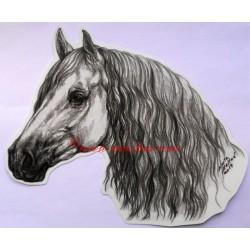 Samolepka andaluzan, pura raza, kůň, koně