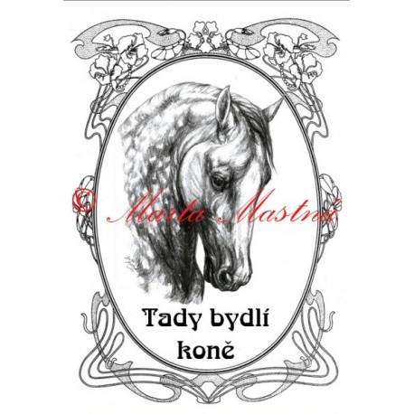 Tabulka koně