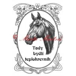 Tabulka koně teplokrevník