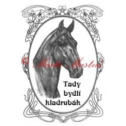 Tabulka kladrubský kůň černý