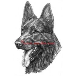 Obraz německý ovčák, tužka - tisk