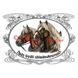 Tabulka chladnokrevníci, českomoravský belgik, koně, kůň