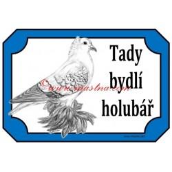 Tabulka holub česká čejka