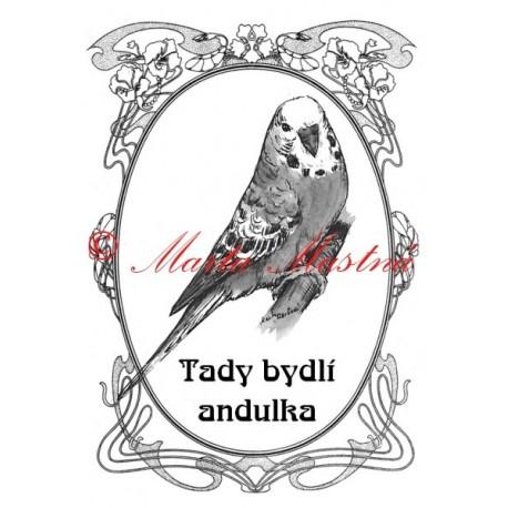 Tabulka papoušek vlnkovaný - andulka
