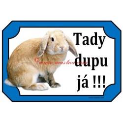 Tabulka králík beran zakrslý žlutý