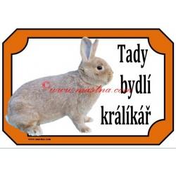 Tabulka králík stříbřitý žlutý