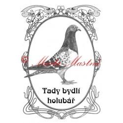 Tabulka holub poštovní, holubář