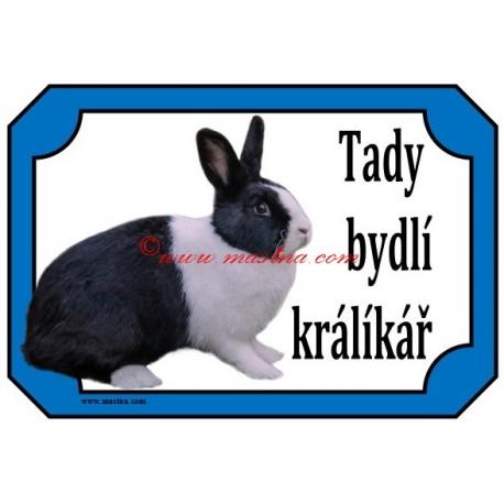Tabulka králík holandský