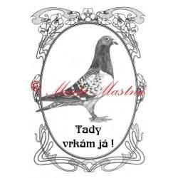 Tabulka holub poštovní