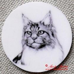 Kočka mainská mývalí magnet nebo placka