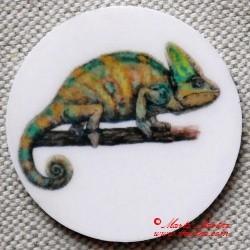Chameleon magnet nebo placka