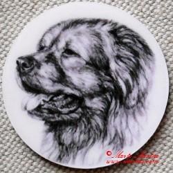 Kavkazský pastevecký pes magnet nebo placka