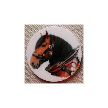 Kůň norik magnet nebo placka