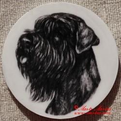 Knírač černý magnet nebo placka