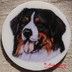 Bernský salašnický pes magnet nebo placka