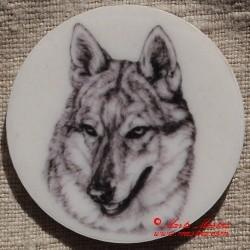 Československý vlčák, vlk magnet nebo placka