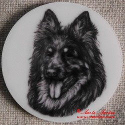 Chodský pes magnet nebo placka