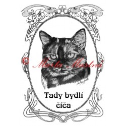 Tabulka kočka želvovinová