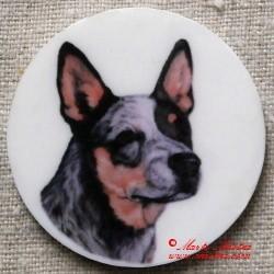 Australský honácký pes magnet nebo placka