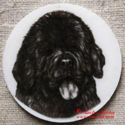 Novofundlandský pes magnet nebo placka