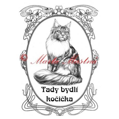 Tabulka kočka mainská mývalí