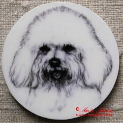 Boloňský psík magnet nebo placka