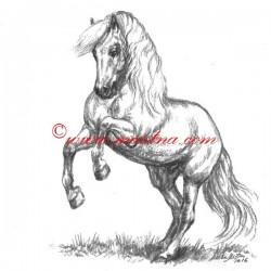 Obraz andaluzan, koně, uhel - tisk