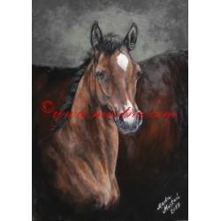 Obraz arabský kůň, hříbě, olejomalba - tisk