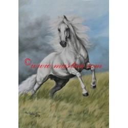 Obraz andaluský kůň, koně, olejomalba - tisk