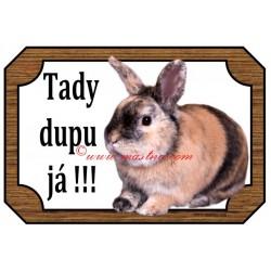 Cedulka králík japonský zakrslý