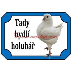 Cedulka holub king bílý