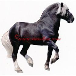 Samolepka chladnokrevník, kůň , koně