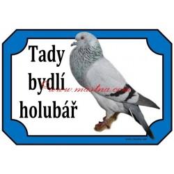 Cedulka holub moravský morák, voláč