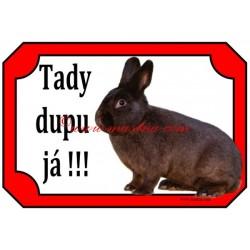 Cedulka králík havana