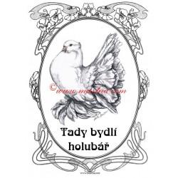 Cedulka holub pávík indický