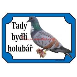 Cedulka holub košoa