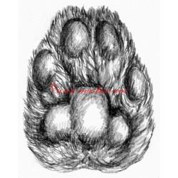 Samolepka tlapka kočičí, 4cm