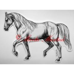 Samolepka kůň shagya arab, samolepky koně