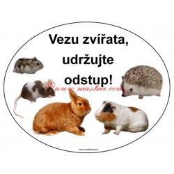 Magnetická fólie morče, myš, ježek, králík, křeček