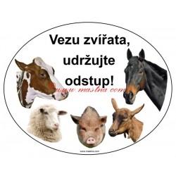 Magnetická fólie kráva, ovce, koza, prase, kůň