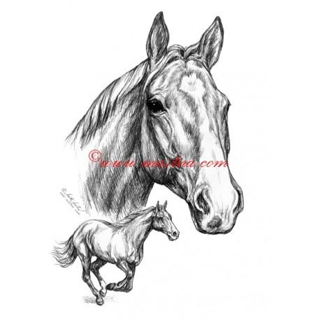 Samolepka Sagar, kůň, koně