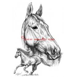 Samolepka Železník, anglický plnokrevník, kůň, koně
