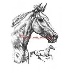 Samolepka Orphee des Blins, kůň, koně